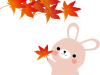 秋 うさぎ